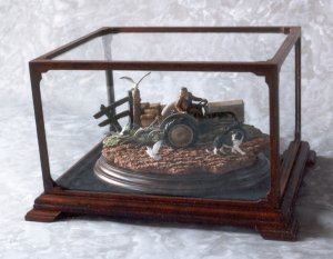 Tractor display case